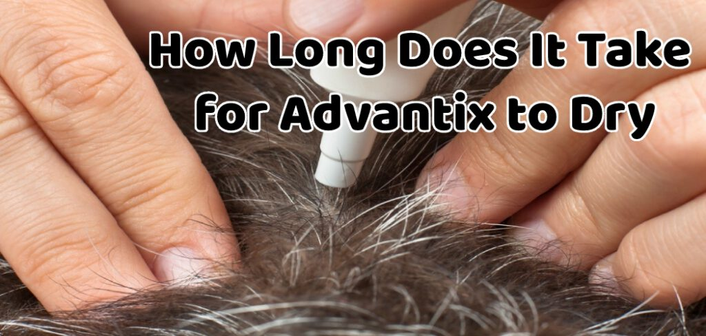 How Long Does It Take for Advantix to Dry
